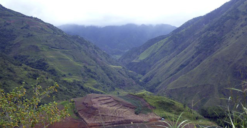 WORTH FIGHTING FOR. The rice fields and vegetable garden in Tulludan, Tinoc, Ifugao are the sources of life among the Kalanguya. These are among the reasons for their staunch opposition against Quadriver's hydro electric power project and PRC Magma's geothermal power project. Photo by Alma B. Sinumlag