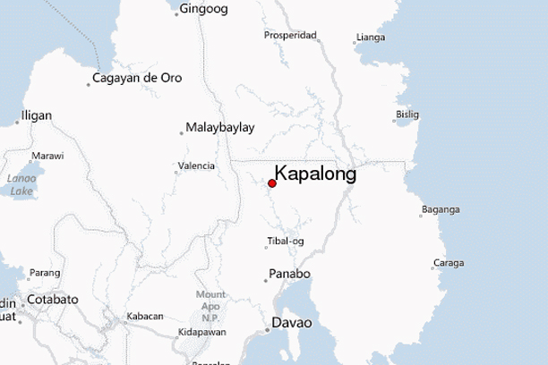 Ex-cop killed in Kapalong raid, firearms seized