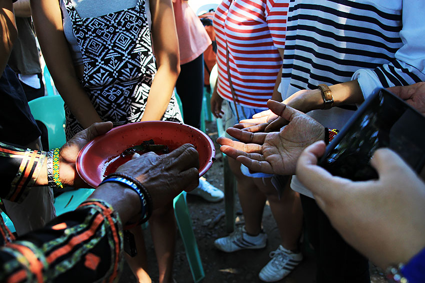 In a Lumad ritual called pamaas, blood from a slain chicken is smeared onto the palms of some 30 activists who will be immersing in the different Lumad communities of Mindanao. The ritual is said to be asking the spirits for the protection and safety of the delegates. (Paulo C. Rizal/davaotoday.com)