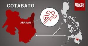 Another Lumad killed in Arakan