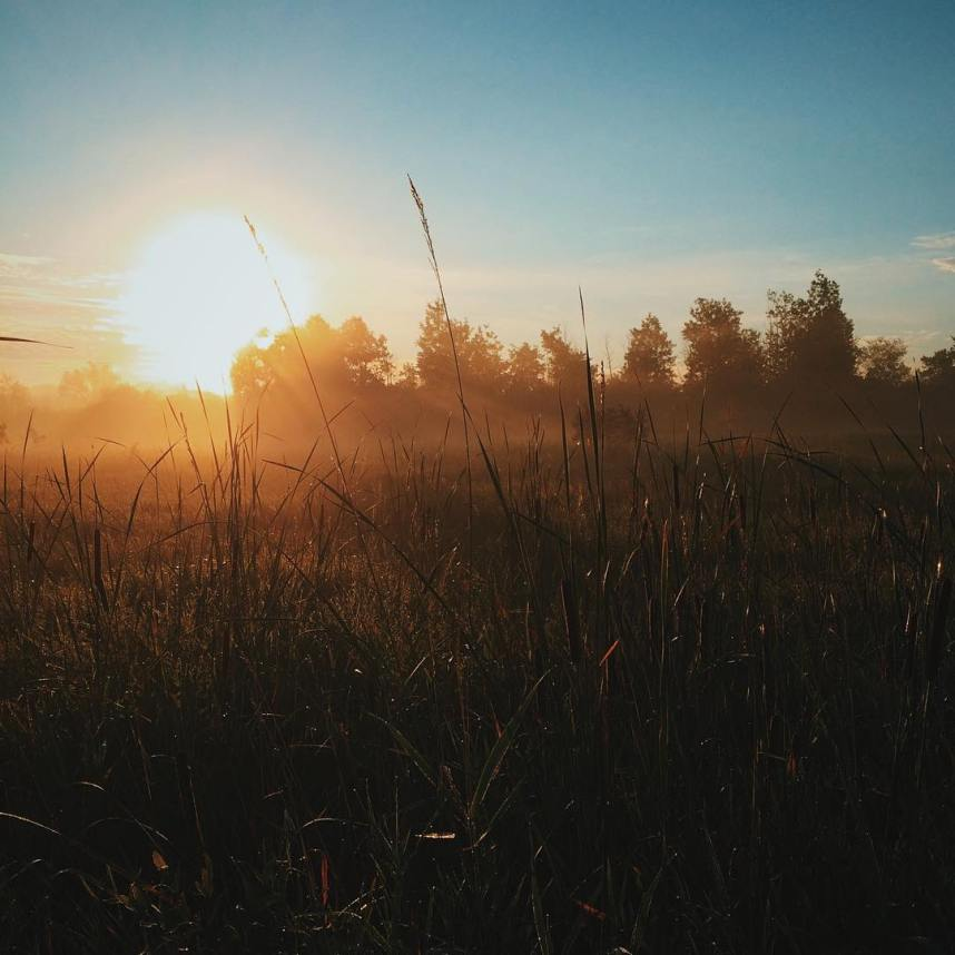 Come the Morning Light - @davelawrence8