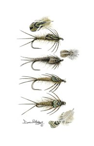 A-Flies-PheasantBackNymphs-WM