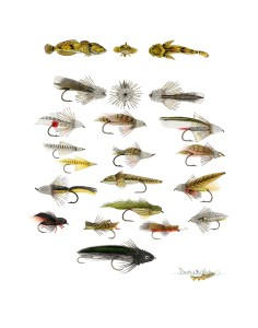 Muddler-Minnow-