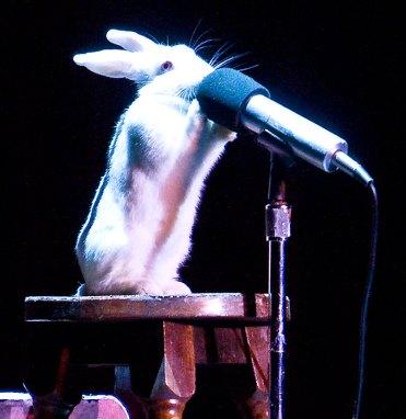 It's Magic! 10/27/07 Lobero Theatre