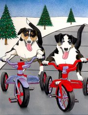 Pip & Pepper take a Holiday Ride!