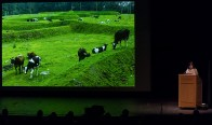 Even cows love Maya Lin's work - UCSB Arts & Lectures 1/30/17 Campbell Hall