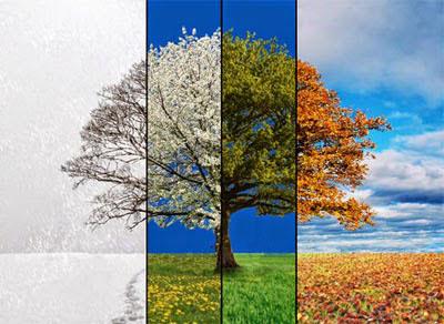 saisons-planète-terre