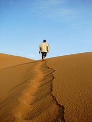 desert-leader.jpg
