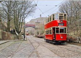 trams-fx-copy