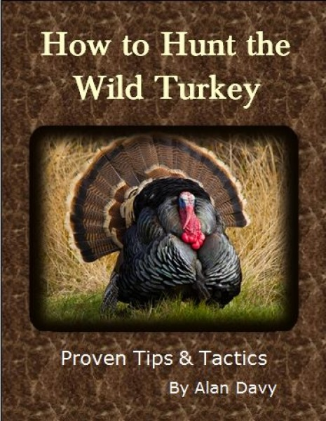 Turkey-Ebook-resized-cover-page.jpg