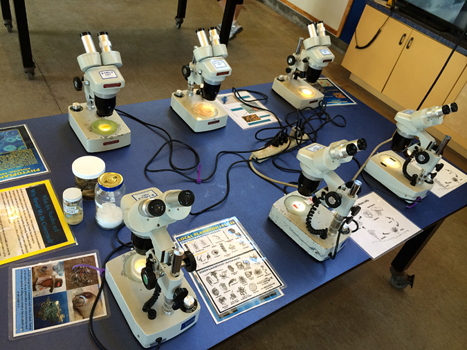 Ocean Institute microscopes