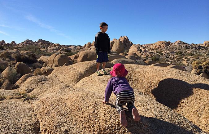 Joshua Tree Jumbo Rocks Scramble National Park Day Trip Trips
