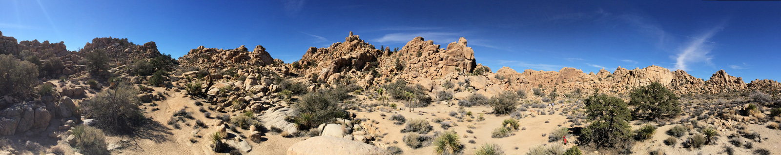 Hidden Valley loop trail panorama.