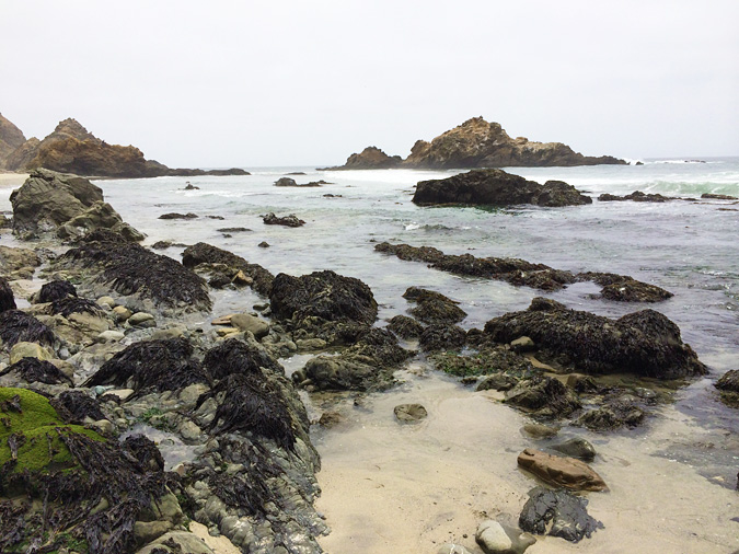 Low tide at Pfeiffer Beach