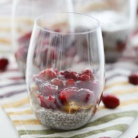 Fig Cranberry Chia Pudding