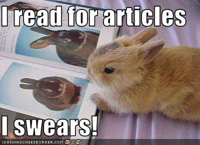 funny-pictures-bunny-reads-the-magazine-for-the-articles