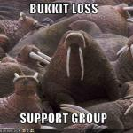 lolrus-funny-pictures-bucket-loss-support-group