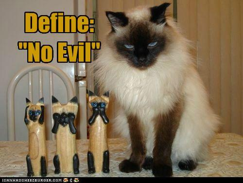 funny-pictures-define-no-evil