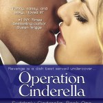 Operation Cinderella by Hope Tarr