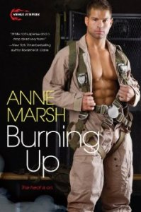 Burning Up      By: Anne Marsh
