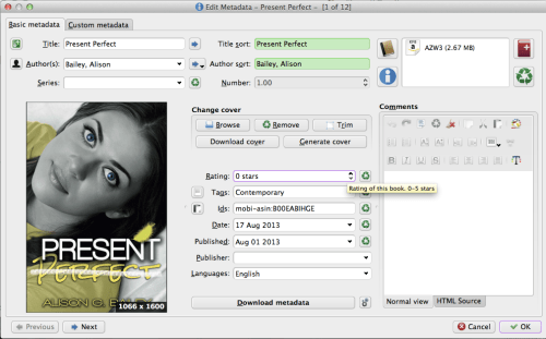 Screenshot of self published ebook metadata screen