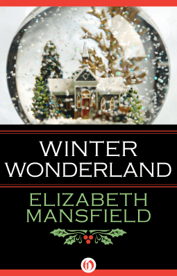 winter wonderland book review
