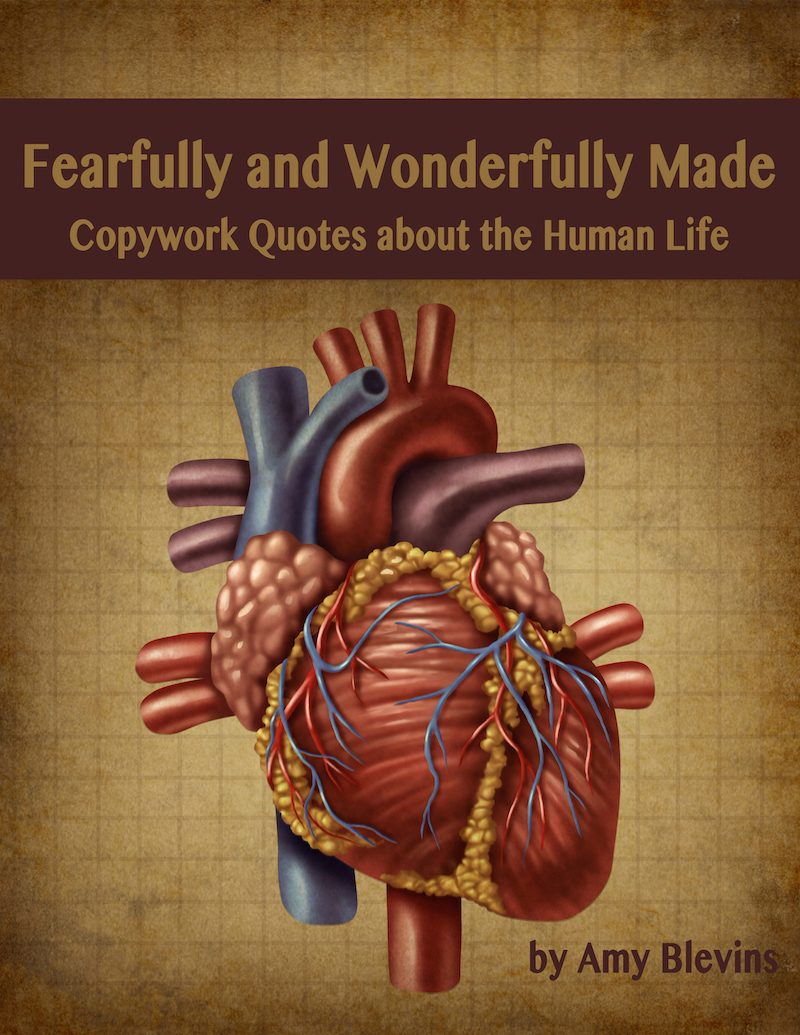 Homeschool Copywork: Fearfully and Wonderfully Made