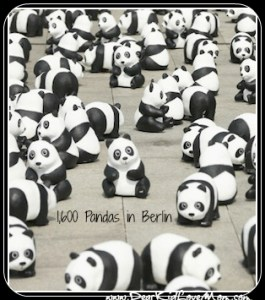 Only 1,600 pandas remain in the wild