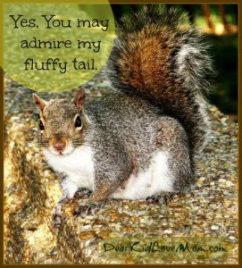Squirrel Tails, Pondering Life on College Campuses DearKidLoveMom.com