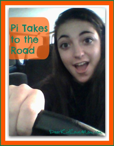 Pi Learning to Drive Driving Lessons DearKidLoveMom.com