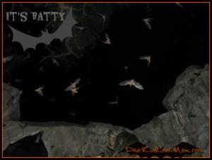 It's Batty DearKidLoveMom.com