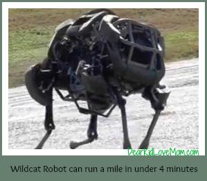 Wildcat robot can run a mile in under 4 minutes DearKidLoveMom.com