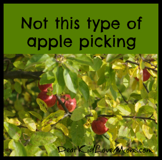 Not this type of apple picking DearKidLoveMom.com