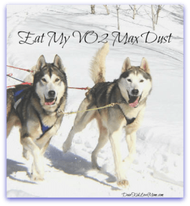 Dog sled DearKidLoveMom.com