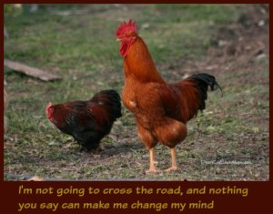 I'm not going to cross the road and nothing you say can make me change my mind. DearKidLoveMom.com