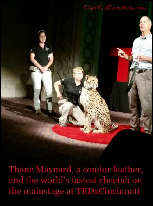 Thane Maynard TEDxCincinnati 2015 DearKidLoveMom.com