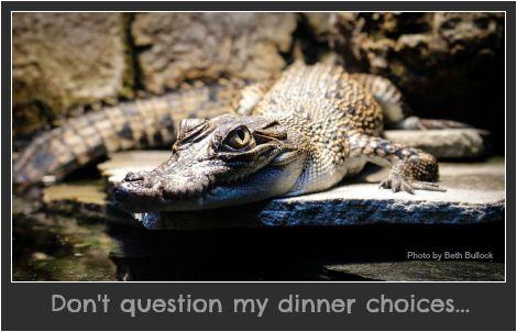 Don't question my dinner choices. DearKidLoveMom.com