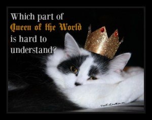 Which part of Queen of the World is hard to understand? DearKidLoveMom.com