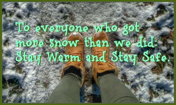 We didn't get much snow in Cincinnati this time, but other places did. To everyone who got more snow than we did, stay warm and stay safe. DearKidLoveMom.com
