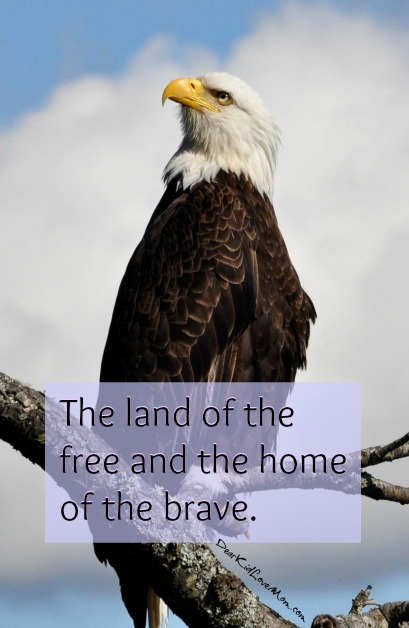 The land of the free and the home of the brave. DearKidLoveMom.com
