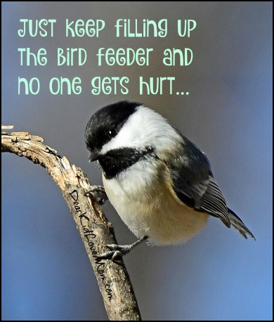 Just keep filling up the bird feeder....that's right...now back away slowly....DearKidLoveMom.com