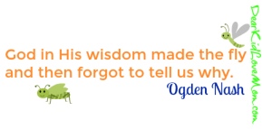 God in His wisdom made the fly And then forgot to tell us why. Ogden Nash. DearKidLoveMom.com