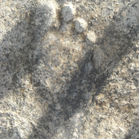 Holy Footprint