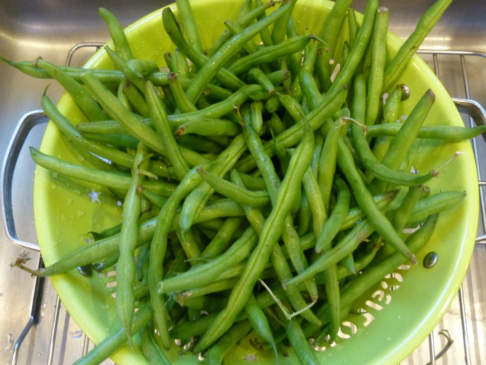 Colander of Green Beans