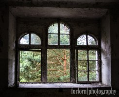 I loved the view of the trees through this window in the Women's Sanatorium. So peaceful. I didn't run into any tourists over here, thank goodness! Camera: Canon Rebel T3i