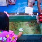 【祭り】夏祭りで子供が喜ぶ定番ゲームとは!親子で行こう東京夏祭り!