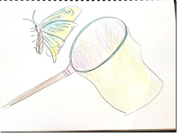 蝶の捕獲網