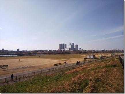 20190224多摩川河川敷8
