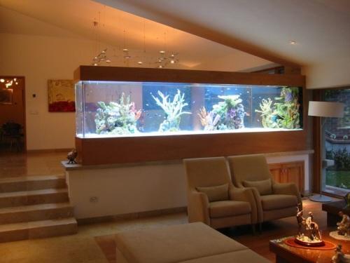 acuario-casa-2