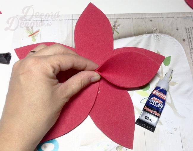Mi falsa flor de pascua - Que cuidados necesita la flor de pascua ...